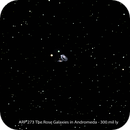 Arp 273,                                Fred