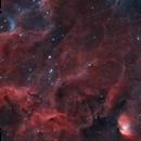 tulip nebula widefield,                                Connor