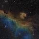 Seagull Nebula,                                  pawelz