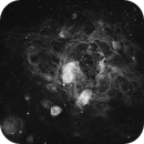 NGC1763, A Southern Rose in Dorado,                                TWFowler