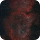 IC 1871 - The heart of the Soul,                                Fabian Rodriguez...