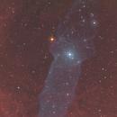 OU-4 Squid Nebula,                                Kathy Walker