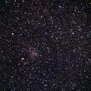 M24 Sagittarius Star Cloud,                                Molly Wakeling
