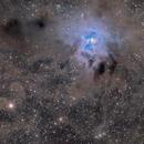 Iris Nebula dusty field,                                lizarranet