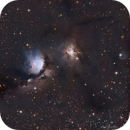 M78 - Reflection Nebula in Orion,                                  Phil Brewer