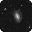 NGC 4725,                                Paddy Gilliland
