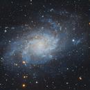 M33 - A work in progress,                                Poppa-Chris