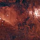 Dust in Orion,                                Luzastral