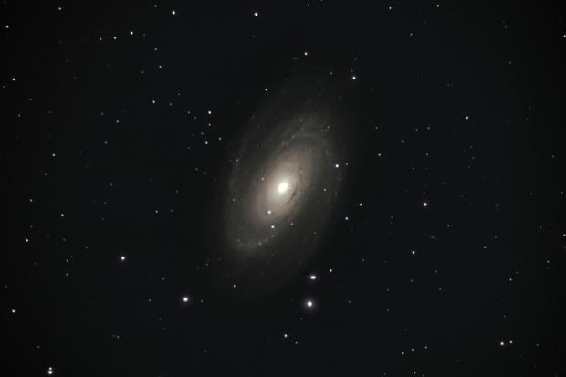 "Bodes ""Nebula"", Galaxy M81,                                Steven Bellavia"