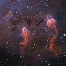 Tadpoles IC410,                                sydney
