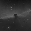 The Horsehead Nebula - IC 434,                                Thomas Richter