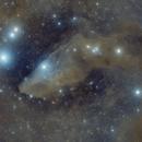 The Blue Horsehead nebula (IC 4592) La nébuleuse de la Tête de Cheval Bleue,                                Roger Bertuli