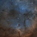 IC 1396 - The Elephant's Trunk Nebula - SHO,                                Andrea Alessandrelli