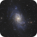 """M33 w/8"""" F/4 Newt,                                mikebrous"""