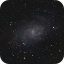M33 on a moon lit night,                                Matthew Abey
