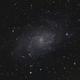 M33 on a moon lit night,                                Matthew Abey