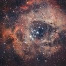 C49 - Nébuleuse de la Rosette RVB,                                Anto