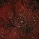 IC1396 Complesso nebulare del Cefeo,                                Giorgio Viavattene