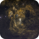 NGC 6357, the War and Peace Nebula SHO,                                Scotty Bishop