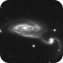 NGC-5395 and 94 - A Classic Arp,                                Steve Solon and Terry Chatterton
