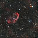 Crescent Nebula,                                  Matthias Steiner