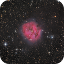 Cocoon Nebula - IC5146 - RGB & LRGB,                                Thomas Richter