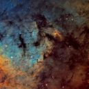NGC7822 narrowband (SHO palette),                                Rick Stevenson