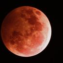 Super Blood Wolf Moon January 21 2019,                                  Jirair Afarian