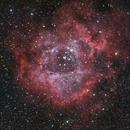 Rosette Nebula,                                AstroTanja