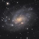 NGC 300,                                Mark