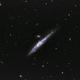 Walgalaxie NGC 4631,                                Michi Scheidegger