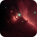 Horsehead Nebula - First light with Radian Raptor 61,                                FrankMagoo