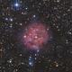 Cocoon Nebula,                                Josh Van