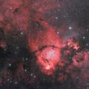Fish Head Nebula,                                Morris Yoder