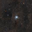 NGC7023 Iris Nebula,                                tommy_nawratil