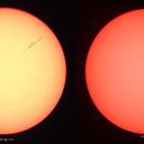 Die ersten Sonnenflecken,                                Silkanni Forrer