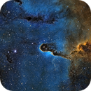 Elephant Trunk Nebula  *AAPOD2*,                                Dan Wilson