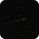 Comet Panstarrs,                                Dan Kordella