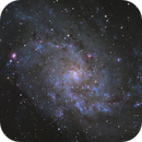 M33 - The Triangulum Galaxy,                                Angelo F. Gambino