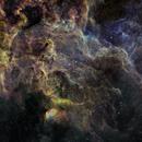 Tulip to Ring Nebula,                                John Ebersole