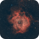 Rosette Nebula,                                Stephen Eggleston