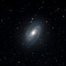 M81,                                Jeff Marston