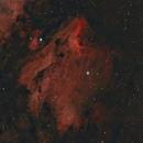 IC 5070 - The Pelican Nebula,                                Sektor