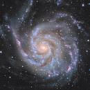 M 101 - Pinwheel Galaxy. High resolution and deep field with C2PU T 1000.,                                Jeffbax Velocicaptor