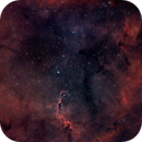 The Complexity of Phenomena. IC 1396 and the Power of Stars.,                                Daniel Erickson