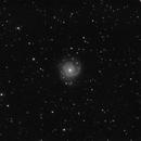 M74,                                Mark Spruce