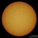 Sun (25.03.2021),                                Luís Ramalho
