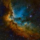 Wizard Nebula, NGC 7380,                                Ricardo Pereira