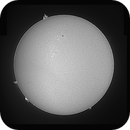 Sun in White Light and Halpha - December 29, 2020 (Full Disks w/ AR2794 & 2795),                                JDJ
