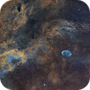 NGC6888 Crescent nebula area mosaic,                                Fernando Huet